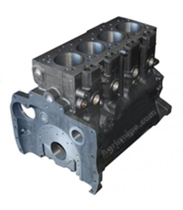 Bloque motor Massey Ferguson Tipo 4.248