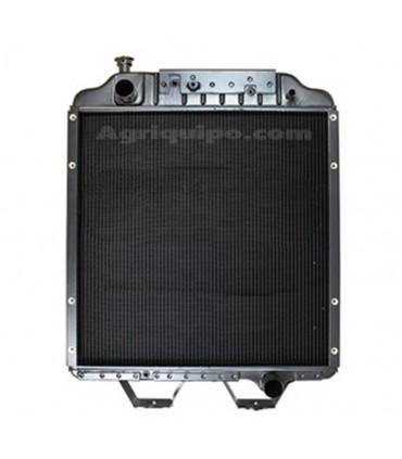 Radiador agua Fiat G-170 (8670)